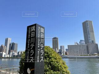 隅田川テラスの写真・画像素材[4325842]