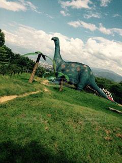 恐竜の写真・画像素材[934474]