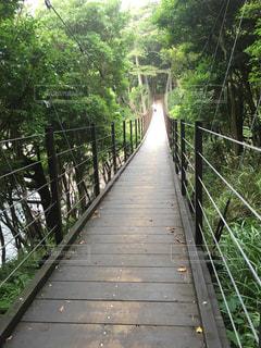 川以上の長い橋の写真・画像素材[935554]