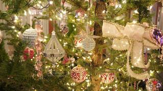 オーナメントたくさんのクリスマスツリーの写真・画像素材[935977]