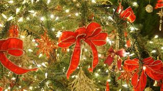 赤いリボンのクリスマスツリーの写真・画像素材[935978]