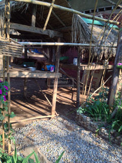 チェンマイの猫ハウスの写真・画像素材[936572]