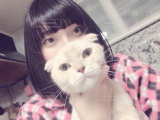 猫と一緒の写真・画像素材[937190]