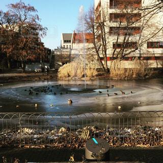 都市を流れる川の写真・画像素材[938376]