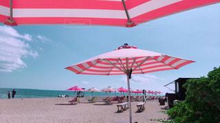 ビーチパラソルの写真・画像素材[938697]