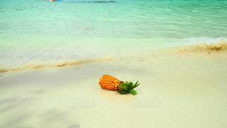 海辺のパイナップルの写真・画像素材[939479]