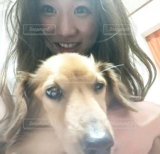 嫌がる犬とツーショットの写真・画像素材[953440]