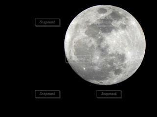近くに黒い背景のアップの写真・画像素材[939523]