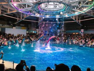 イルカのショーの写真・画像素材[939547]