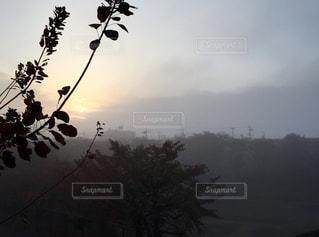 山の景色はごちそうの写真・画像素材[940492]