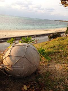海辺の浮き玉の写真・画像素材[957319]