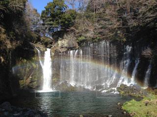 虹の白糸の滝の写真・画像素材[940957]