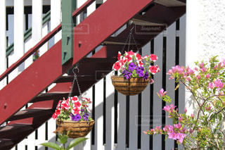 花飾りの写真・画像素材[945751]