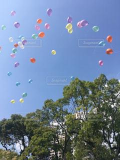空に凧の飛行 - No.959793