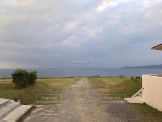 石垣島のとある野原の写真・画像素材[941220]