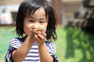 バッタを持つ女の子の写真・画像素材[941307]