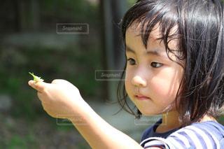 バッタを持つ女の子の写真・画像素材[941309]