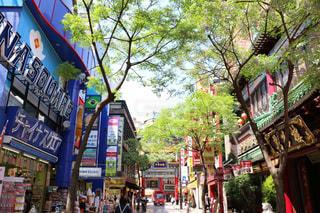 横浜中華街の写真・画像素材[941390]