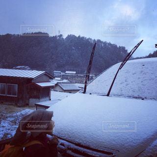 初雪にワクワクの写真・画像素材[941533]