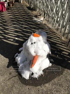 雪だるまの写真・画像素材[987889]