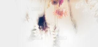 花束の写真・画像素材[957030]