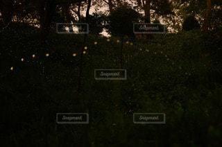 夜空と夜景 - No.80186