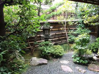日本庭園の写真・画像素材[943135]
