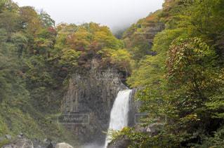 森の中の大きな滝の写真・画像素材[961646]