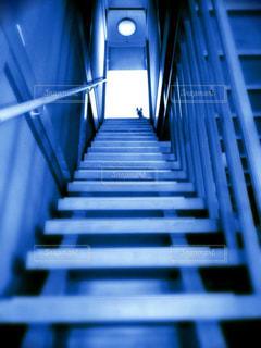 階段と犬 - No.944836