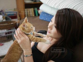 猫タイムの写真・画像素材[944662]