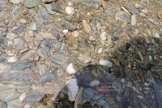 石のアップの写真・画像素材[942544]
