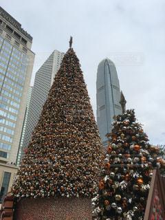 香港のクリスマスツリーの写真・画像素材[942813]