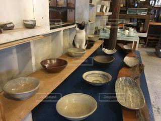 益子焼とネコの写真・画像素材[944143]