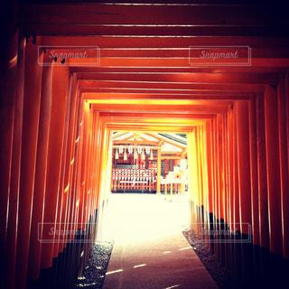 伏見稲荷の鳥居の写真・画像素材[944956]