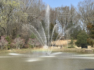 噴水と虹の写真・画像素材[1053956]