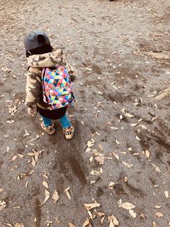 秋のお散歩の写真・画像素材[943372]