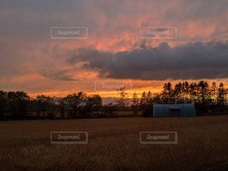 農家の秋の写真・画像素材[943862]