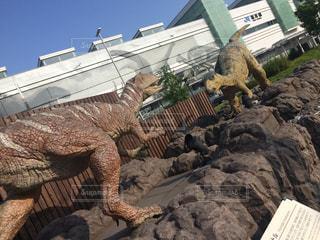 福井駅前の恐竜の写真・画像素材[944399]