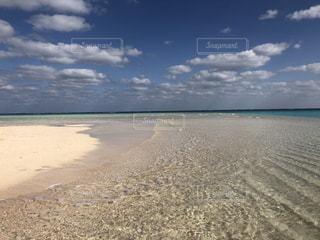 百合ヶ浜1の写真・画像素材[944876]