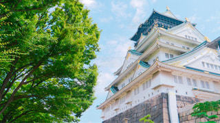 大阪城の写真・画像素材[946746]