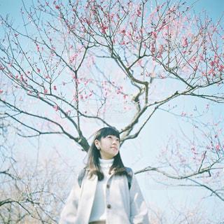 木の隣に立っている人の写真・画像素材[945789]
