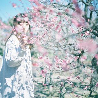草の中に立っている男の人の写真・画像素材[945790]