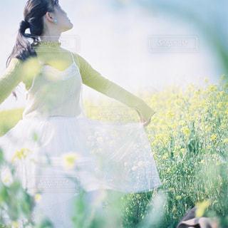 緑の草原の女の写真・画像素材[945792]