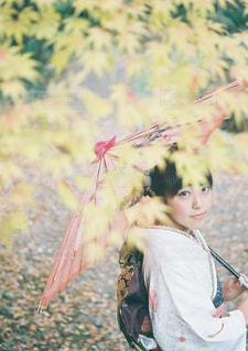 凧を保持している少年の写真・画像素材[947176]