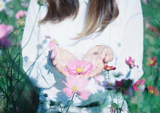 花を持っている人の写真・画像素材[997565]