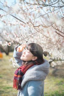 木の隣に立っている女の子 - No.1010184