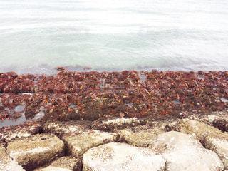 海の写真・画像素材[945521]