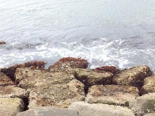 海の写真・画像素材[945524]