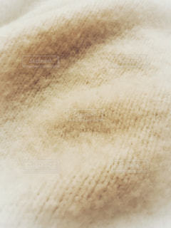 セーターの写真・画像素材[952163]