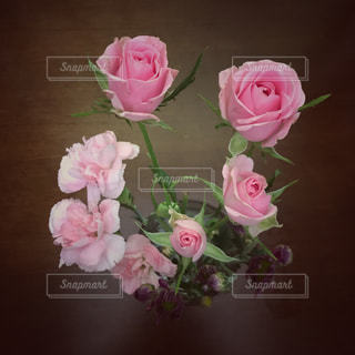 花の写真・画像素材[1284005]